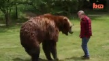 Wrestling A Grizzly Bear In My Garden