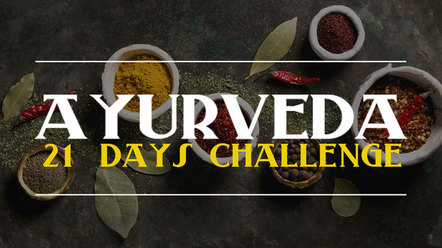 Day 5 - I nurture my body from love and acceptance